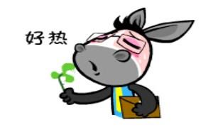 搞笑QQ表情:憨憨驴搞笑QQ表情下载