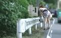 日本街头戳美女菊花ooxoo动态图