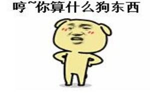 问候QQ表情:哼!你算什么狗东西