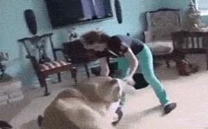 这是要xxoo狮子当宠物跟你玩
