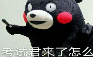 小熊熊可爱QQ表情大全