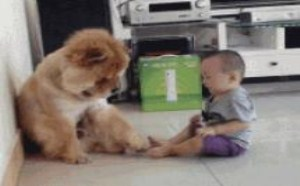 搞笑gif动态图爆笑小孩 你摸我脚我也摸你脚