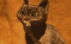 可爱小猫,超可爱Qq表情